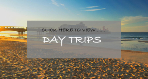 View our day trips